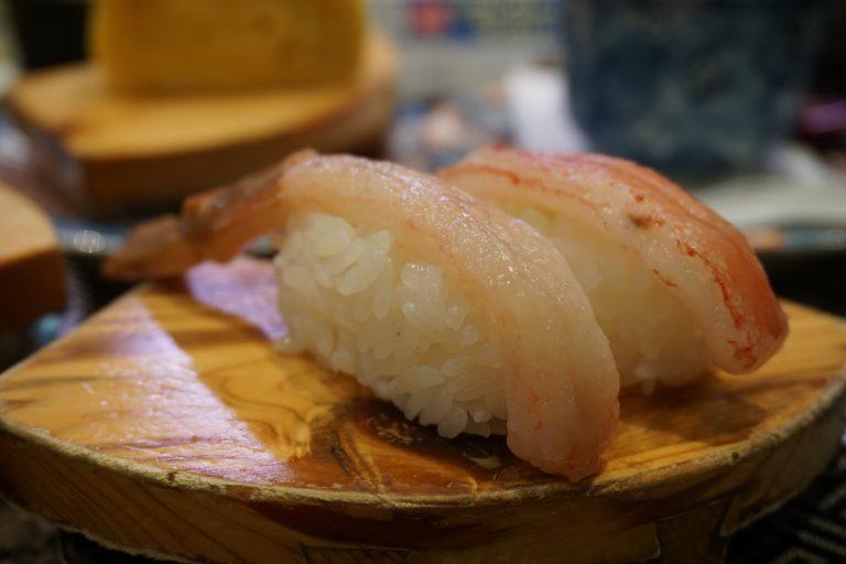 sanyo-sanin-jr-pass-urchin