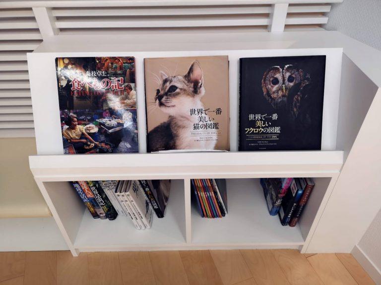 sanyo-sanin-jr-pass-goflyla-matsue-art-catbook