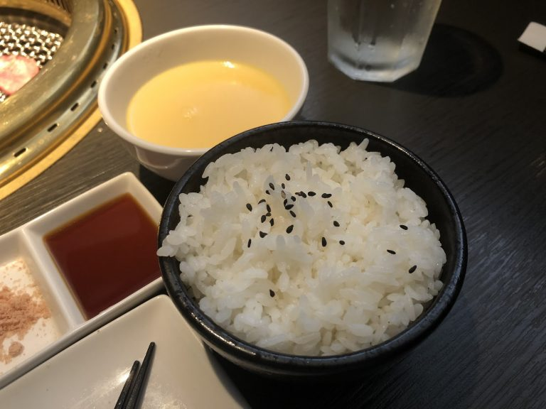 nikuniku-chickensoup-rice-goflyla