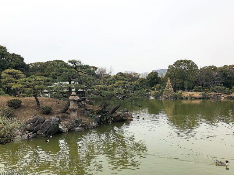 kiyosumi-shirakawa-pond-goflyla