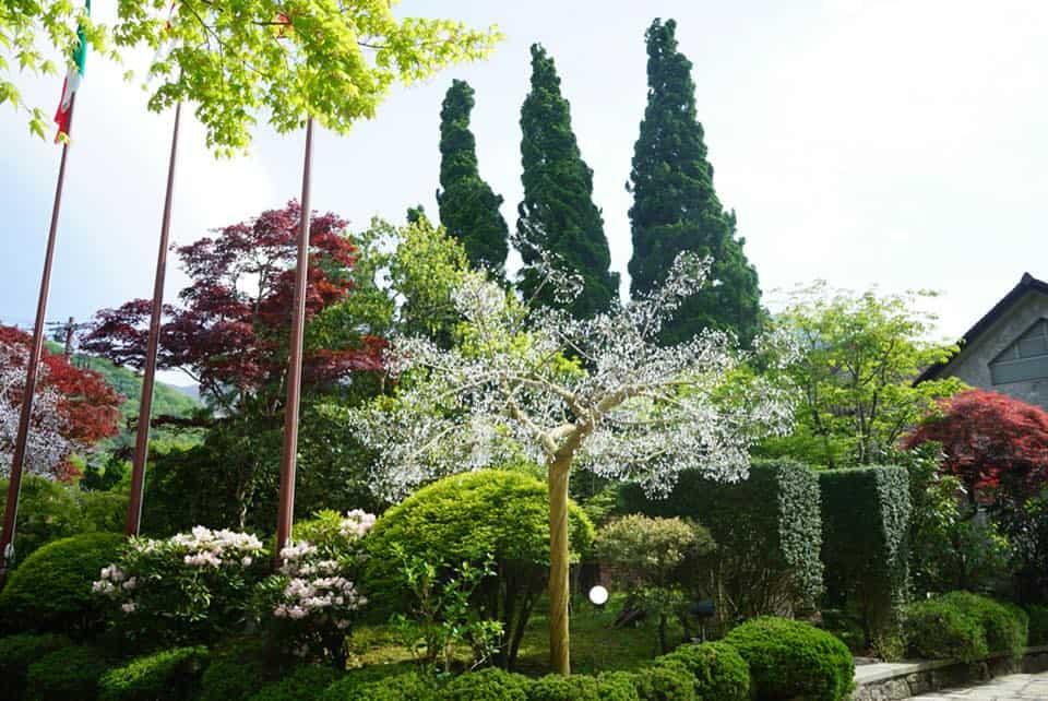 東京箱根自由行:強羅白檀溫泉旅館+玻璃之森美術館
