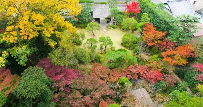 日本三大古老名湯:宮崎駿千與千尋場景道後溫泉、400年歷史皇室旅館(下)